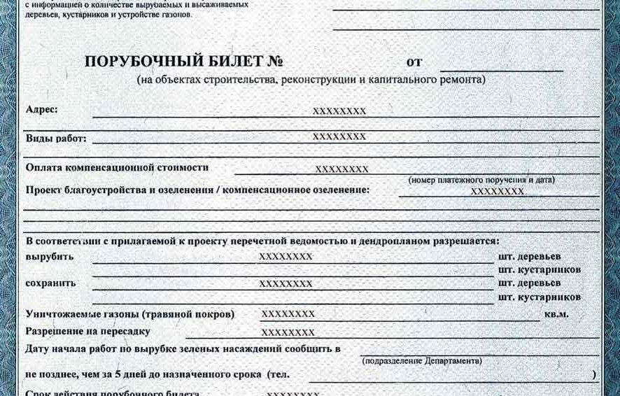 Получение порубочного билета в Москве и области