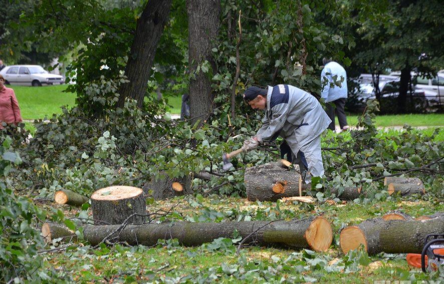 Рубка упавших деревьев - недорого!