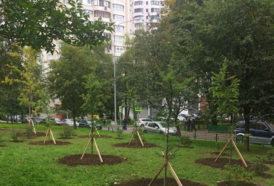 Благоустройство территории в Москве – Услуги под ключ!